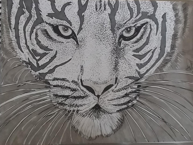 Sarah Bouzaglou Boissin - tigresse