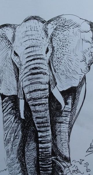 esquisse dessin éléphant